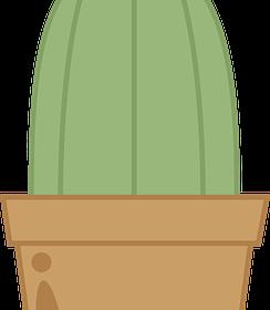 Ogród – jak go pielęgnować?